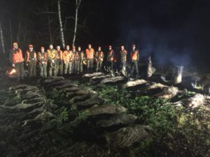 over 25 animals after driven hunt in Poland